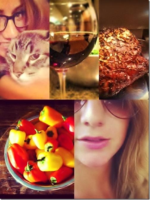 Collage - grilled lamb roast   mini pepper   red wine   eye glasses