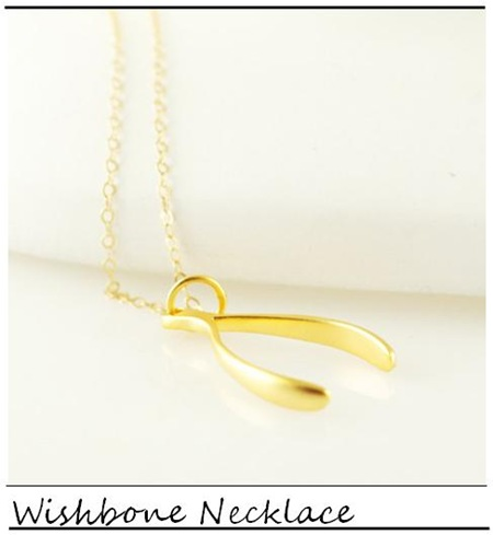 Lucky horn_Wishbone Necklace_